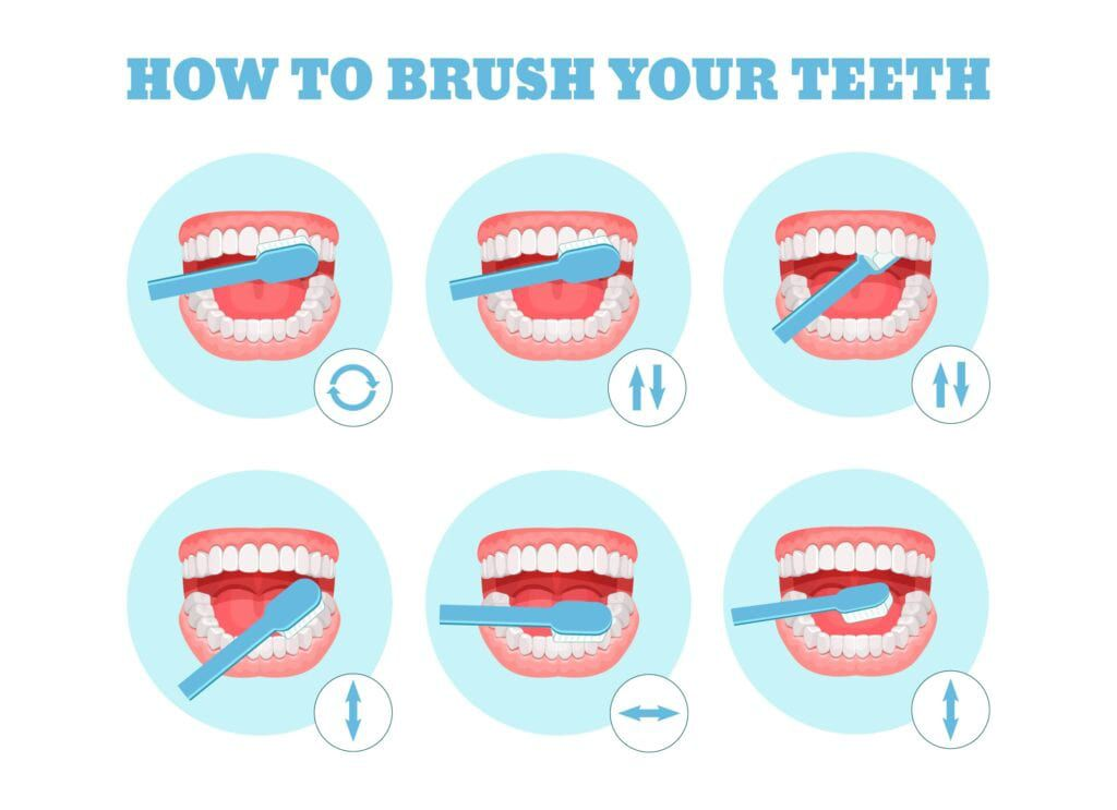 diagram on how to brush your teeth